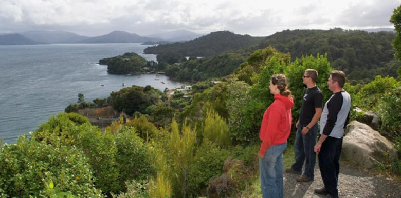 Stewart Island Tours
